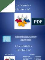 Organizaciòn y Metodos - Los Comites