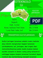 Kultur Jaringan Alga_KLP II.pptx