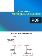 Curs Ppt Metabolismul Glucidic Biochimie Nov2014 Final