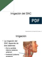 Irrigacion Del Snc