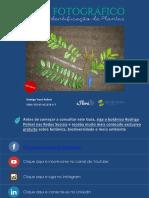 Guia Fotográfico Para Identificação de Plantas Efloraweb