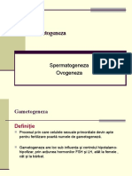 4-GAMETOGENEZA,fecundatia,nidatia,embriogeneza-12.ppt
