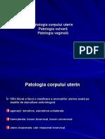 16.Patologia corpului uterin,vulvara,vaginala-12.ppt