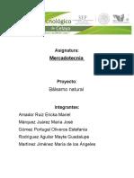 Proyecto Balsamo Labial