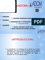 332973499-Adom-Proyecto-Final-Migue-Erika.pdf