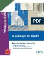 Guide Pathologie Des Façades