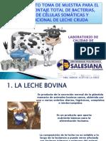 TOMA DE MUESTRAS (EC).pdf
