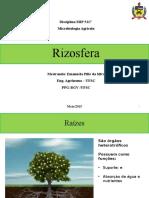 2864_Rizosfera e Endofiticos (1)