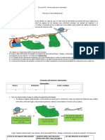 PROYECTO TINKUY 2015-CURAY.docx