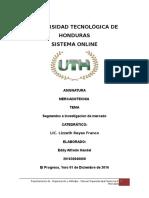 Tarea de Segmentos e Investigacion de Mercado Eddy Handal