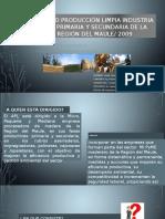 Presentación APL.pptx