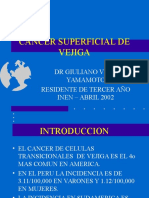 ca_superficial_vejiga_1.ppt
