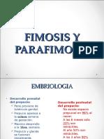 fimosisyparafimosis