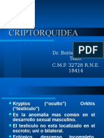 CRIPTORQUIDEA_para_resid.ppt