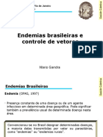 Aula 7 - Endemias Brasileiras e Controle de Vetores