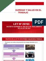 Analisis de La Ley 29783 y Reglamento