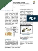 Bioquimica..degradacion del almidon