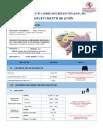 FICHA INFORMATIVA SOBRE SEGURIDAD CIUDADAD JUNIN.pdf