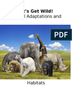 animaladaptationsandhabitatskaitlynsthirdgradescienceunit-2