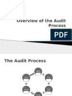 Overview of the Audit Process Hehe