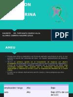 Ameu - Osorio