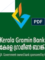 Financial performance of kerala gramin bank special reference to southern area