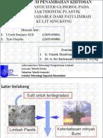 ITS Paper 27525 2305100088 Presentation
