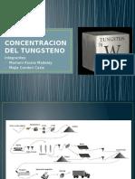 Concentracion Del Tungsteno (1)