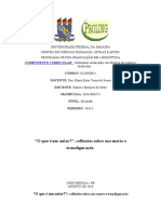 Resenha-Teórica-Ester-RaniereMarques (1).doc