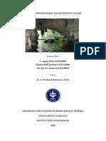 Peran Ekosistem Karst Dalam Sistem Tata Air