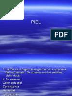 1.PIEL