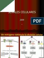 2009 Señales celulares y regulación de la expresion génica