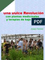 Plantas Dulce Revolucion