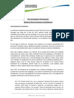 Plan Desarrollo Bellavista