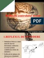 Reflexele Controlului Motor
