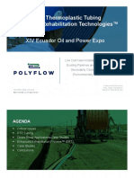Polyflow ExPERT Ecuador Presentation