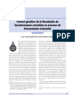 Buenrostro (2009) Control Genético de La Floculación de Saccharomyces Cerevisiae en Proceso de Fermentación Industrial