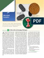 Genetika Mikroba_Tugas 24 Nov 2016.pdf