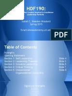 mini portfolio for flite