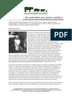 aturdimientodeanimalesporpernocautivo.pdf