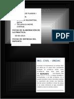 224112785-Informe-de-Laboratorio-Empuje-Hidrostatico.docx