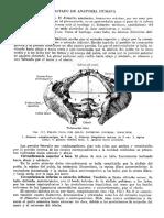 Tratado de Anatomia Humana Quiroz Tomo I_176