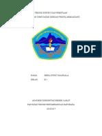 Teknik Survey Dan Pemetaan Beril