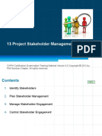 13 Project Stakeholder
