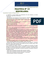 Practica Nº 14