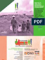 EstudioMigraciónNNA DH y trabajo infantil