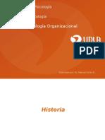 psicologiaorganizacional-110703201057-phpapp02