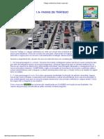 Tráfego e trânsito de veículos e pessoaso.pdf