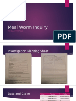 Meal Worm Inquiry