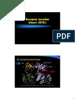 tyrosine-kinase-receptor1.pdf